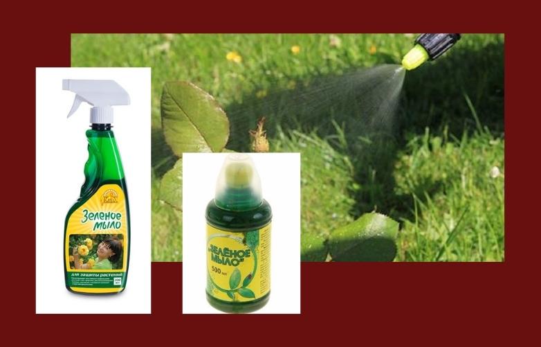 зеленое мыло защита растений