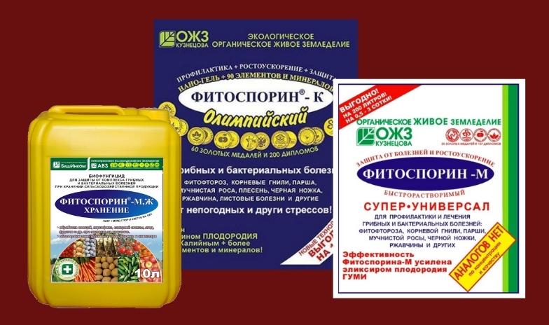 инсектицид фитоспорин