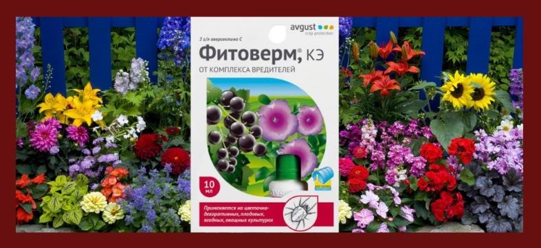 Фитоверм обработка цветов