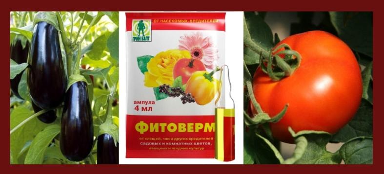 Фитоверм обработка овощных культур