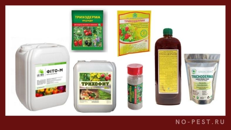 примеры препаратов на основе действия гриба триходерма