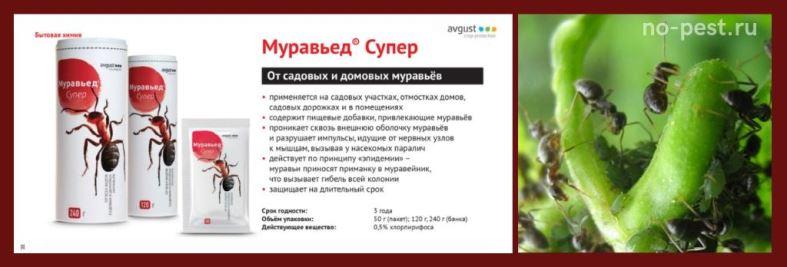 Муравьед - Супер гранулы