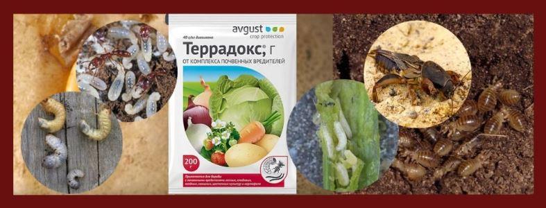 Террадокс инсектицид от почвенных вредителей инструкция