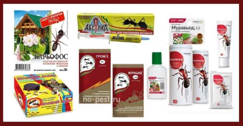 Примеры инсектицидных препаратов для избавления от муравьев на участке