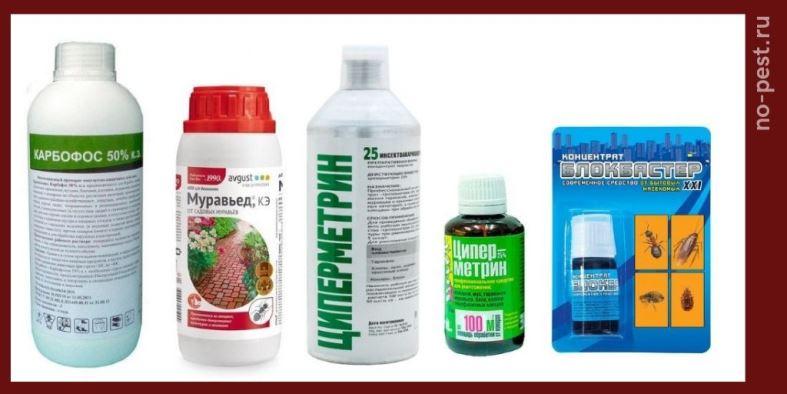 Жидкостные концентраты инсектициды от муравьев. Примеры препаратов