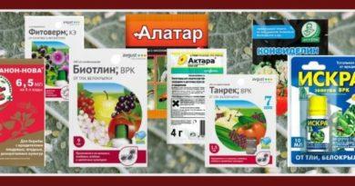 Средства борьбы с белокрылкой - выбор и сравнительный анализ применяемых инсектицидов