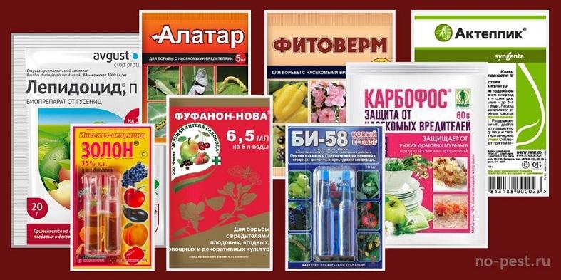 Примеры инсектицидных препаратов, используемых для контроля численности яблонной плодожорки