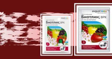"Инсектицид ""Биотлин"" - защита от тли и белокрылки. Инструкция по применению"
