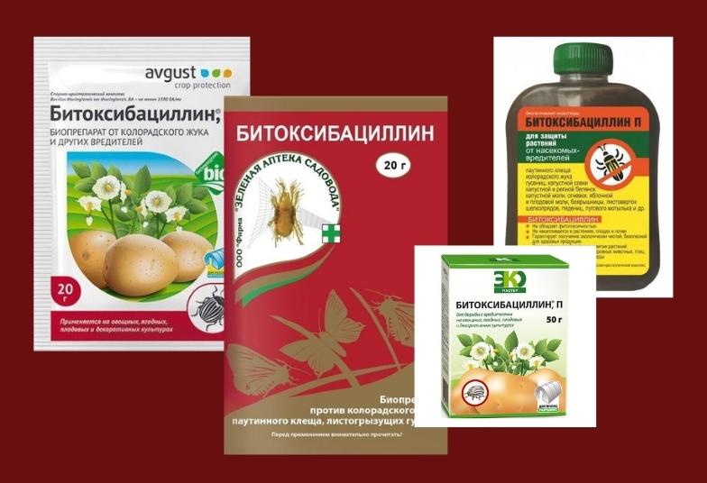 битоксибациллин инсектицид биологический